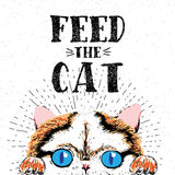 Feed the cat. Vector illustration with hand drawn lettering on texture background. Royalty Free Stock Photography