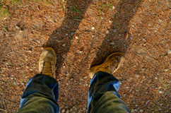 Feed on the ground. Standing with the feed on the ground, a person walking, a forest in autumn, forest leaves, forest leaf, the forest floor, branches with Royalty Free Stock Images