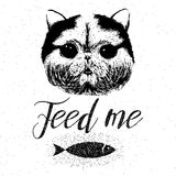 Feed me, vector hand drawn typographic poster with cute, friendly, smiling cat Royalty Free Stock Photography