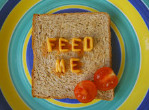 Feed me words on toast. The words feed me made from alphabetti spaghetti on a piece of toast royalty free stock photos