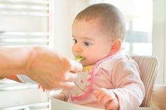 Feed newborn weaning Royalty Free Stock Photo