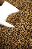 Feed Pellets Stock Images