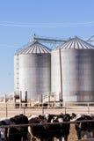 Feed silos Stock Photography