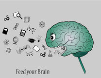 Feed your brain. With knowledge. Simple illustration of brain eating symbols of knowledge Stock Photo