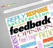 Feedback Online Survey Answers Opinions. A website screen showing an online survey for collecting feedback, opinions, answers and viewpoints from customers or Stock Photos