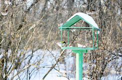 Feeder for birds Royalty Free Stock Images