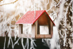 Feeder for birds in winter forest Stock Image