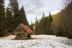 Feeder for deer in the woods. Manger with hay for the reindeer in the winter forest stock photo