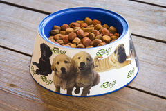 Feeder for dogs royalty free stock photos