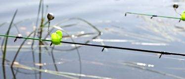 Feeder method in fishing and bells on the rods tips Stock Images