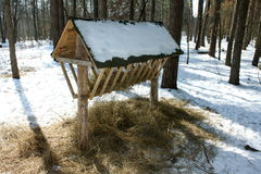 Feeder for wild animals. In the winter forest Royalty Free Stock Photos