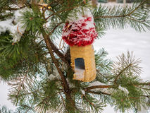 Feeders for birds on a branch covered with snow Stock Photo