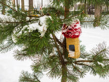 Feeders for birds on a branch covered with snow during Stock Photos