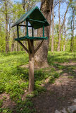 Feeders for birds in the park in spring Stock Images