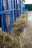 Feeders in the barn with fresh hay to feed farm animals stock image