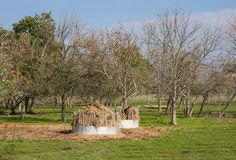 Feeders with hay for animals in in Hortobagy National Park, Hungary. Feeders with hay for animals in Hortobagy National Park, Hungary Stock Images