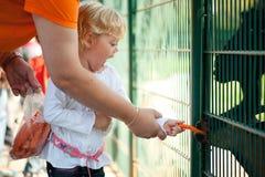 Feeding Animals Stock Images