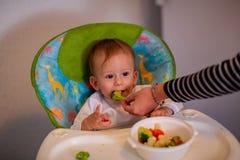 Feeding baby - adorable boy eating broccoli royalty free stock photography