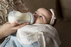 Feeding the baby Stock Images