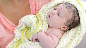 Feeding Baby. Newborn Baby stock footage
