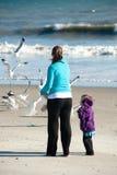 Feeding birds. Woman and child feeding birds at the beach Stock Photography
