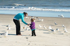 Feeding birds. Mother and daughter feeding birds at the beach Royalty Free Stock Photography