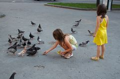 Feeding the birds. Small girls feeding pidgeons in Lviv city Square Stock Photography