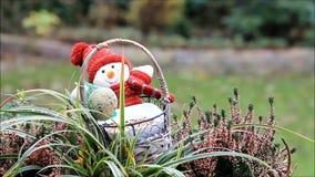 Feeding birds outside, winter, fodder in a basket stock video footage