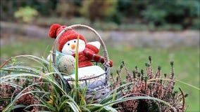 Feeding birds outside, winter, fodder in a basket, doll stock video footage
