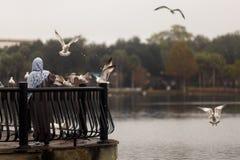Feeding birds. A woman is feeding wild birds Royalty Free Stock Image