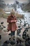 Feeding the Birds Stock Photography