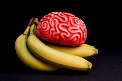 Feeding the Brain with Healthy Food for Energy Royalty Free Stock Images