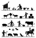 Pictogram icons presenting feeding of domestic animals on the fa royalty free illustration