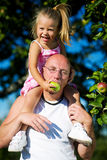 Feeding daddy. A girl feeding her daddy with apples sitting on his shoulders Stock Photo