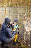 Feeding deer. Woman and child feeding a deer at a zoo in Alsdorf, Germany Royalty Free Stock Photo