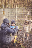 Feeding deer. Woman and child feeding a deer at a zoo in Alsdorf, Germany Stock Photos