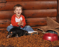 Feeding the Dog Stock Image