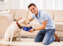 Feeding dog Stock Photography