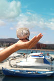 Feeding the dove from hand. Stock Photography