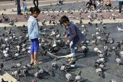 Feeding the Doves, Barcelona, Spain Stock Photos