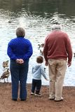Feeding the ducks Stock Photos