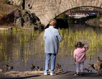 Feeding the ducks. Little girl with her grand mother feeding the ducks Stock Photos