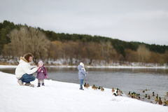 Feeding ducks at winter Royalty Free Stock Photography