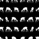 Feeding fallow deer silhouette of animal dark seamless pattern eps10 Stock Photo