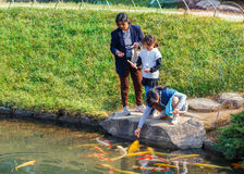 Feeding Fancy Carp at Korakuen in Okayama Royalty Free Stock Photo
