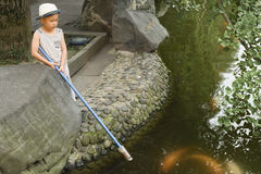 Boy feeding  fish Royalty Free Stock Photography