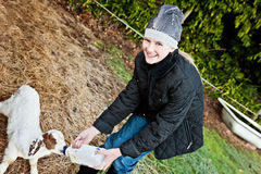 Feeding a goat on the farm Royalty Free Stock Photography