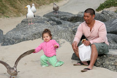Feeding the Gulls. Father and daughter feeding the seagulls Royalty Free Stock Photo