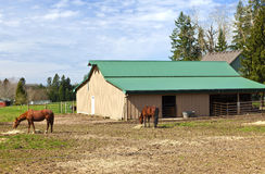Feeding horses and barn in rural Oregon. Stock Photo