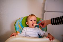 Feeding hungry baby child in chair royalty free stock images